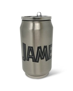 Double Wall 9oz Stainless Steel Can w/ Straw