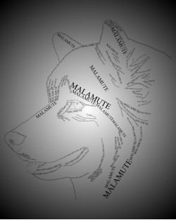 Malamute head design sweatshirt