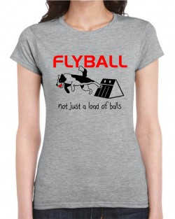 Flyball Collie