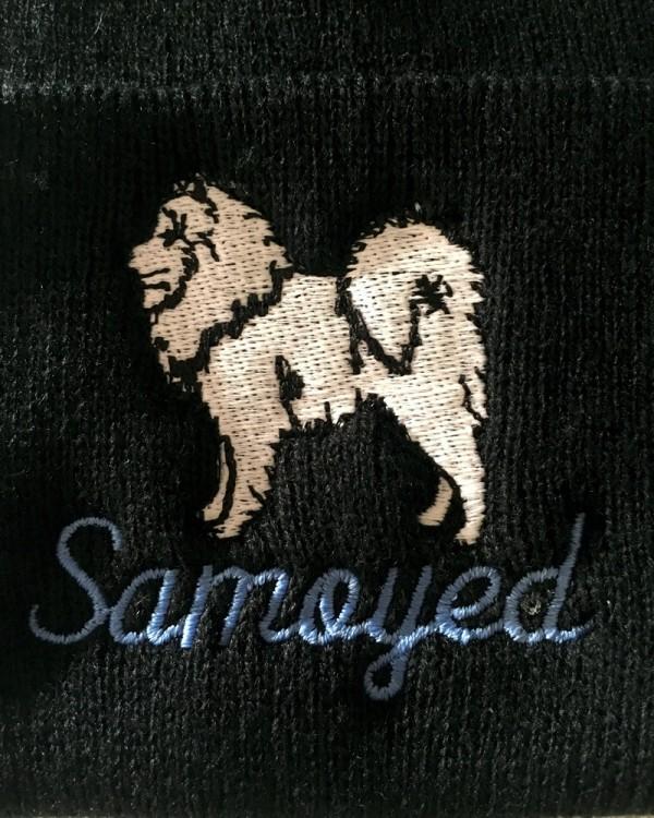 Beanie - Samoyed