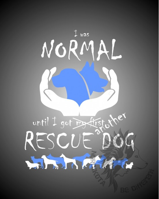 I Was Normal - Rescue